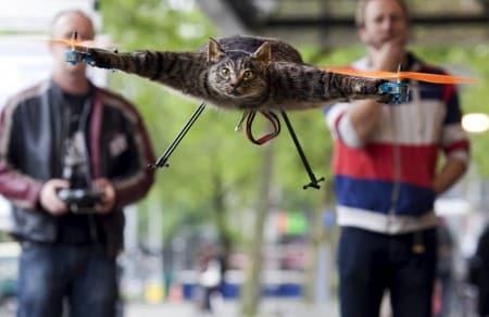 Orvillecopter, de vliegende kat