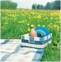 Picknick met dekentje en mand tussen de bloemen in het gras